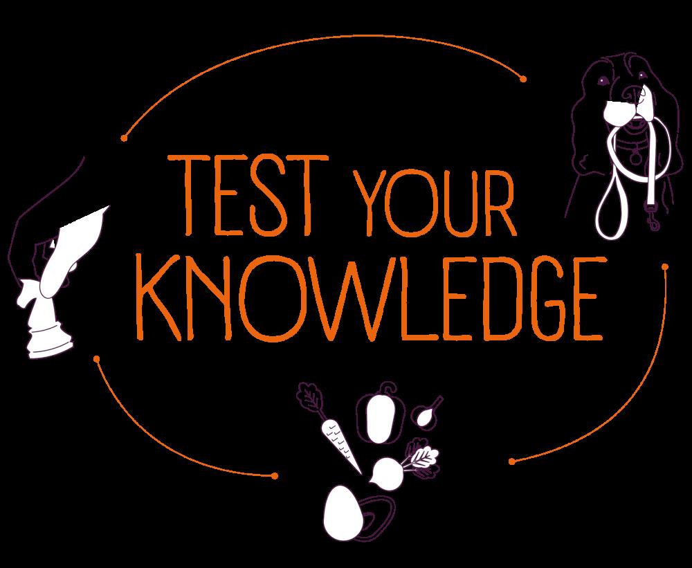 the brain health quiz