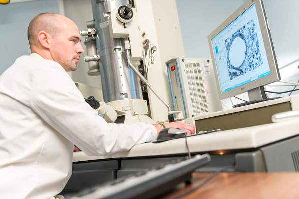 A scientist analysing research results on a screen
