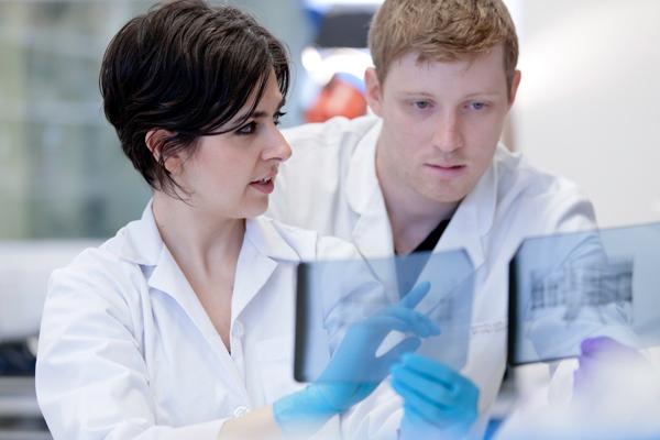 Scientists talking