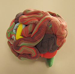 de-blog-brain