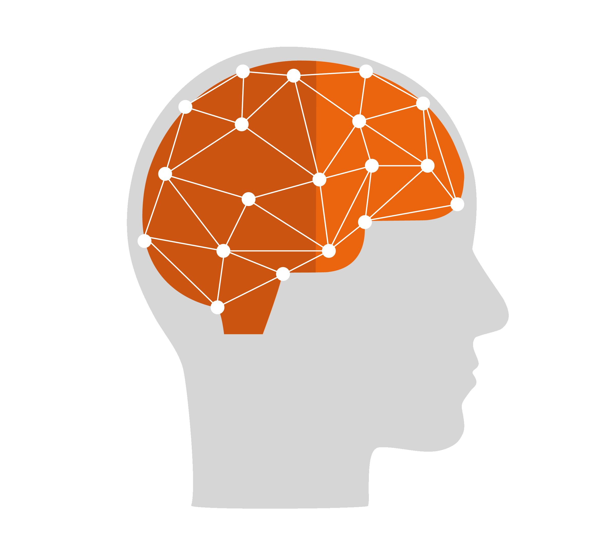 Brain-High Res