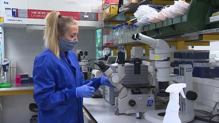 Prof Coleman's lab return