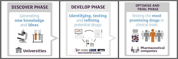 drug discovery phases