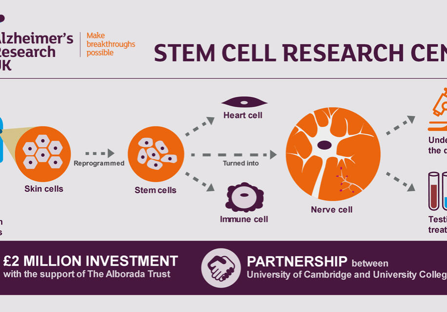 StemCellResearch_JAN19